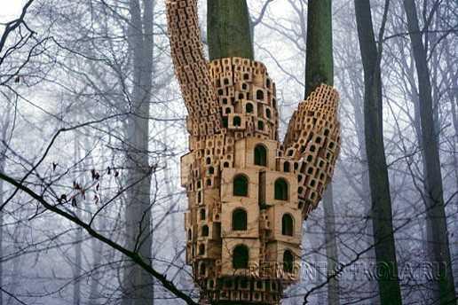 Скворечник для большой и дружной стаи птиц