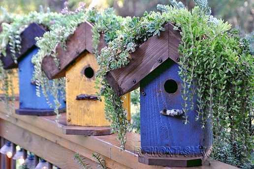 Синие и жёлтые деревянные скворечники