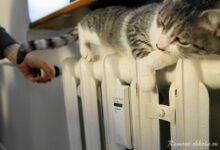 Фото Как сохранить тепло в своей квартире