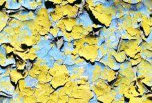 Фото Как покрасить стену заново, если краска шелушится