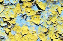Как покрасить стену заново, если краска шелушится