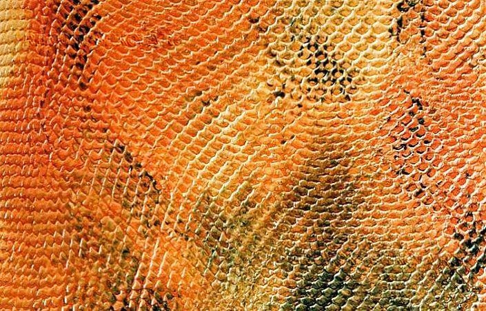 Штукатурка кожа змеи